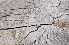 Grão de madeira resistida natural bonita foto de stock