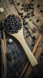 Grão de pimenta preto Fotografia de Stock