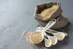 Grão do Quinoa em colheres de medição pequenas do saco e da porcelana de serapilheira Foto de Stock