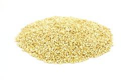 Grão do Quinoa no fundo branco imagens de stock royalty free