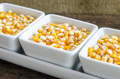 Grão dourada do milho na bacia Profundidade de campo rasa Foto de Stock