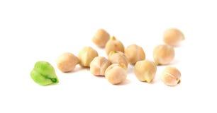 Grão madura e grão verde do grão-de-bico Imagens de Stock Royalty Free