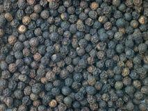 Grãos da pimenta preta Fotografia de Stock
