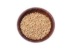 Grãos-de-bico brancos secados, Chana branco, feijões paquistaneses/indianos das lentilhas secadas do grão-de-bico, na bacia de ma fotos de stock royalty free