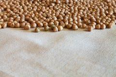 Grãos-de-bico e tecidos de algodão secados naturais Fotos de Stock