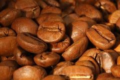 Grãos de café. Foto de Stock Royalty Free