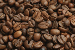 Grãos de café Fotografia de Stock Royalty Free