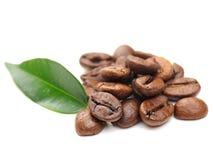 Grãos de café e folha Imagem de Stock