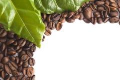 Grãos de café e folhas Fotos de Stock Royalty Free