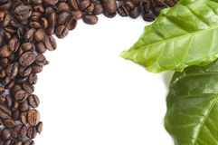 Grãos de café e folhas Fotos de Stock