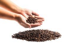 Grãos de café nas mãos Imagem de Stock