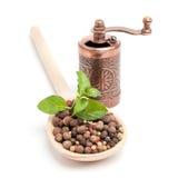 Grãos de pimenta em uma colher de madeira com moedor fotos de stock royalty free