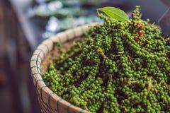 Grãos de pimenta verdes frescos não processados na cesta Foto de Stock