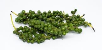 Grãos de pimenta verdes frescos no branco imagens de stock