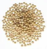 Grãos de soja Imagens de Stock
