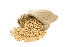 Grãos de soja em um saco no branco Imagens de Stock