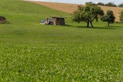 Gräber mit Hütte und Erde auf einer ländlichen Landschaft des Maisfeldes Stockfotos