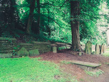 Gräber nahe dem Holz Lizenzfreie Stockfotografie