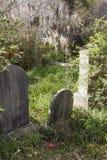 Gräber und spanisches Moos Stockbilder