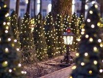 Gränd av julgranar som dekoreras med girlander och lyktan fotografering för bildbyråer