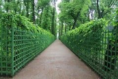 Gränd aveny, gränd, galleria, gångbana, bakgata, promenad, gångallé Arkivfoto