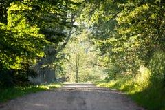 Gränd för landsväg som tänds av aftonsolen Royaltyfri Foto