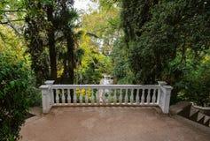 Gränd i botanisk trädgård royaltyfri fotografi