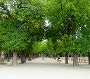 Gränd i den Luxembourg trädgården Royaltyfria Bilder