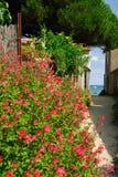 Gränd i Noirmoutier royaltyfria bilder
