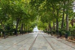 Gränd i parkera, Roda, Spanien Arkivfoto