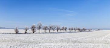 Gränd i vinterlandskapet som täckas med snö Royaltyfri Foto