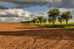 Gränd mellan fält Fotografering för Bildbyråer