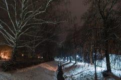 Gränd och flod för natt snöig Royaltyfri Fotografi