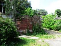 Gränden av det botaniskt parkerar med en gammal övergiven byggnad, naturen, grönska, gröna växter royaltyfri foto