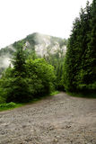Gränden från träna som går på berget Royaltyfria Foton