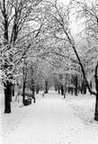 Gränden i vintern parkerar Arkivbild