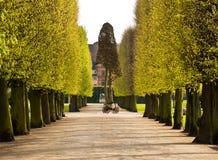 grändpark Royaltyfri Foto