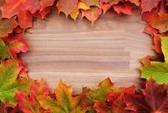 Gräns av nedgånglönnlöv på trä Arkivbild