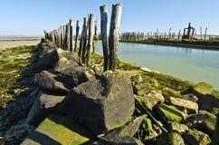 Gräns av pölen i ostronlantgård av Fromentine royaltyfri fotografi