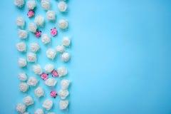 Gräns av små rosor på en blå bakgrund arkivbild