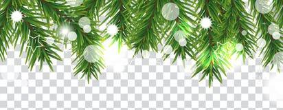 Gräns för jul och för lyckligt nytt år av julgranfilialer på genomskinlig bakgrund Semestrar garnering vektor vektor illustrationer