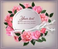 Gräns med den mjuka rosa färgrosen Royaltyfri Bild