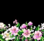 Gräns med magnoliablommor också vektor för coreldrawillustration royaltyfri illustrationer