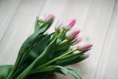 Gräns - rosa tulpanlögn på en trätabell Blommor som en gåva Royaltyfria Foton
