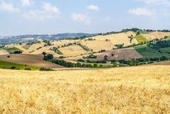 Gränser (Italien), landskap Royaltyfri Foto