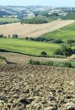 Gränser (Italien): sommarlandskap Fotografering för Bildbyråer