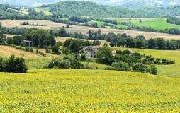 Gränser (Italien): sommarlandskap Arkivbild