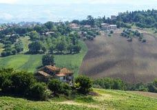 Gränser (Italien): sommarlandskap Royaltyfri Fotografi