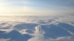 Gränslöst iskallt landskap under en snöstorm stock video