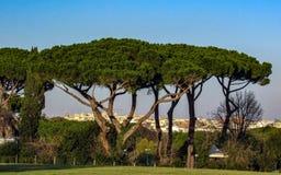 Gränsmärken och historiskt fördärvar i Rome, Italien royaltyfri foto